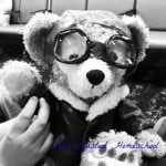 Aviator Duffy