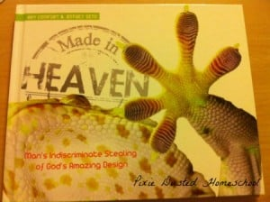 Made in Heaven 1