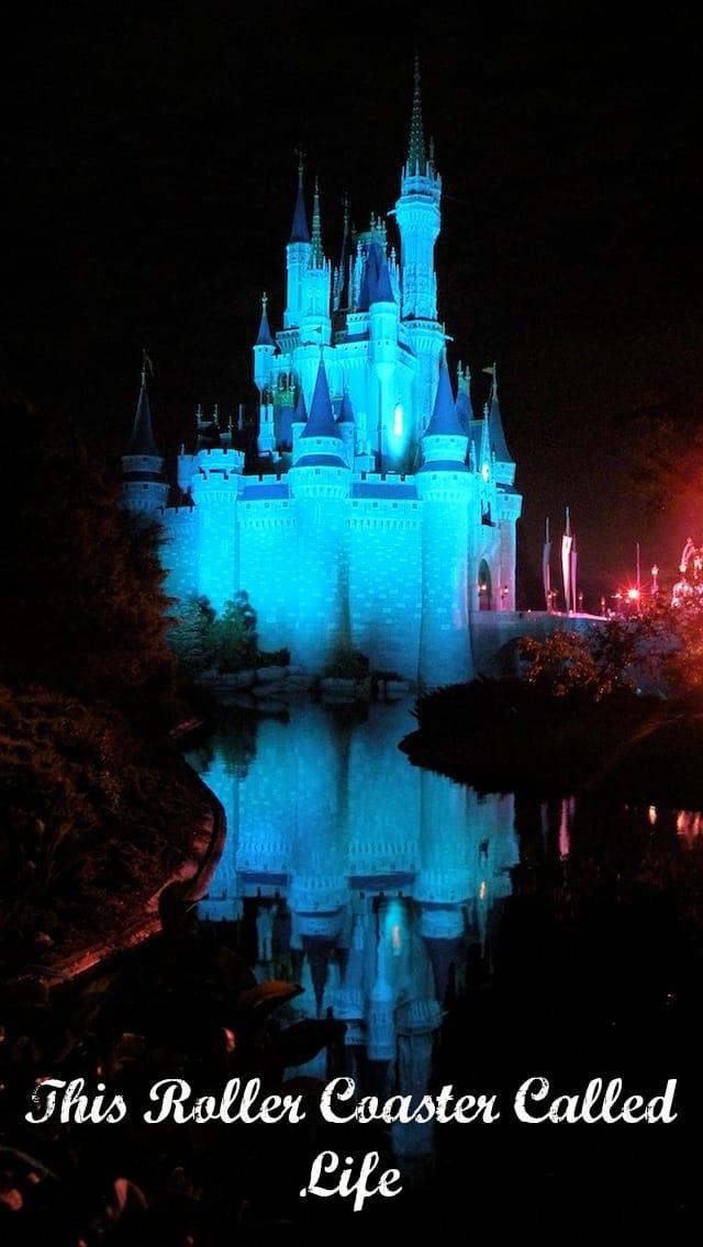 Cinderellas Castle At Night