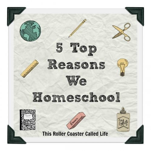 5 Top Reasons We Homeschool