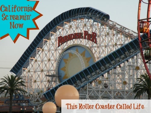 California Screamin' on Paradise Pier