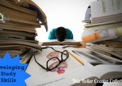 Developing Study Skills #homeschool #parenting #education