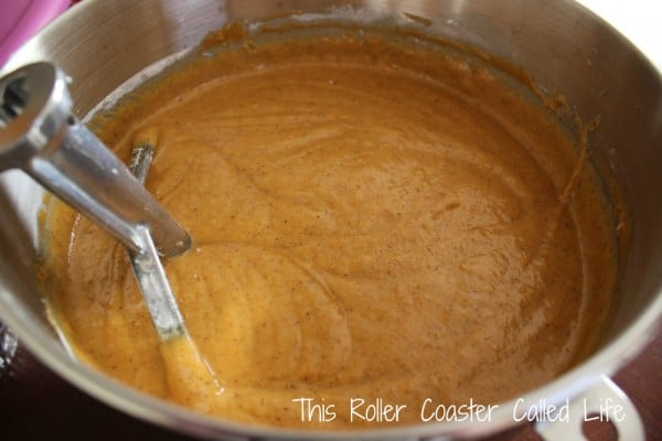 Pumpkin Muffin Mixture