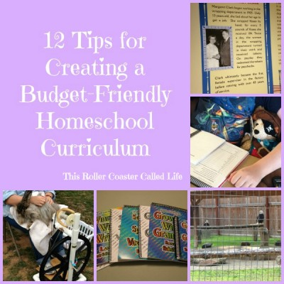 12 Tips for Creating a Budget-Friendly Homeschool Curriculum