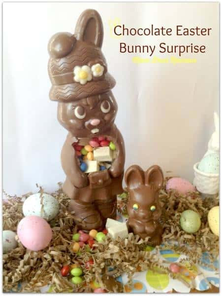 Chocolate Bunny Easter Surprise