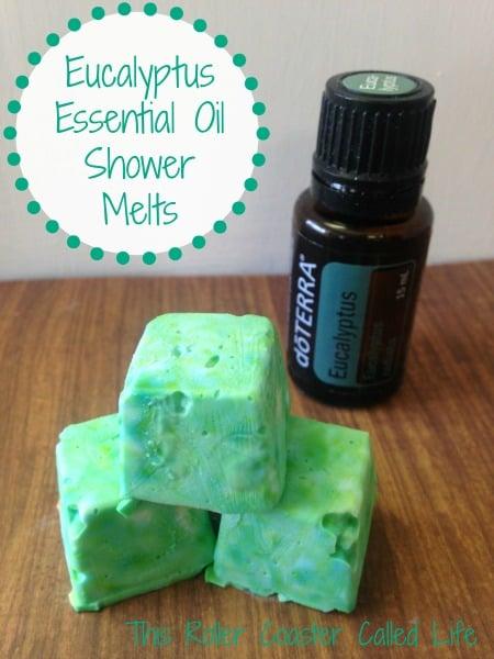 Eucalyptus Essential Oil Shower Melts