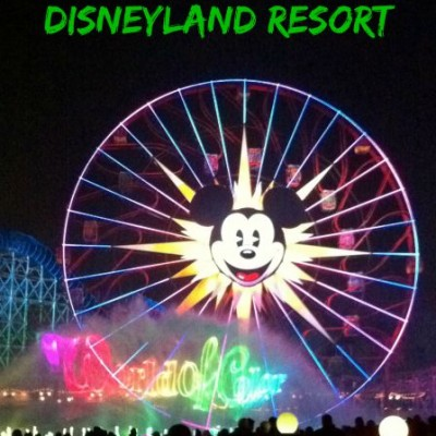 7 Shows to See at the Disneyland Resort