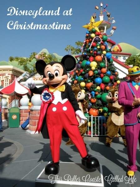 Disneyland at Christmastime