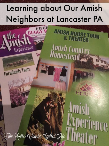 the Amish Experience