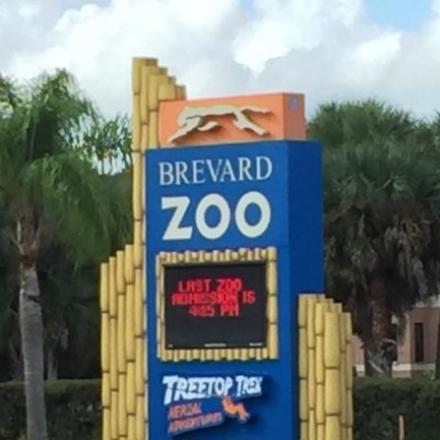 A Day at Brevard Zoo
