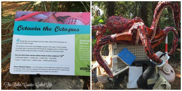 Brevard Zoo Octavia the Octopus