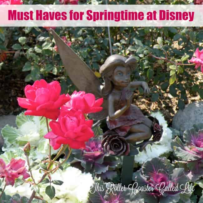 Must Haves for Springtime at Disney