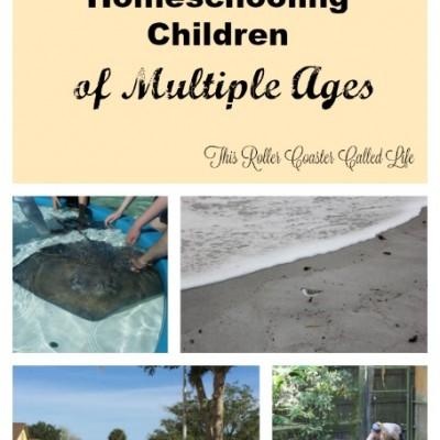 Tips for Homeschooling Children of Multiple Ages