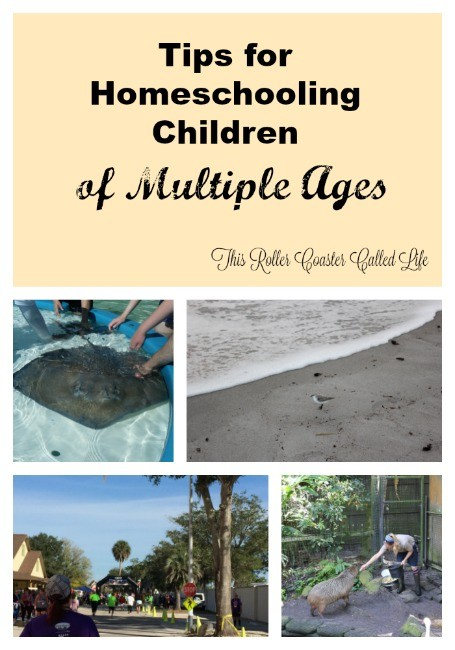 Tips for Homeschooling Children of Multiple Ages