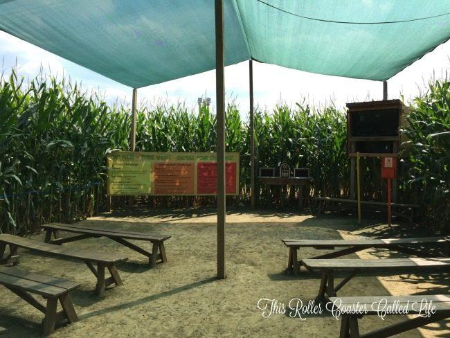 Corn Maze Orientation Talk
