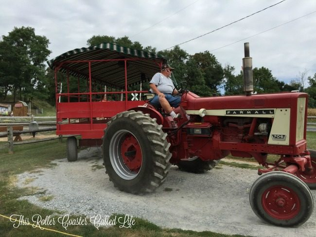 Tour the Farm Behind the Farmall Tractor
