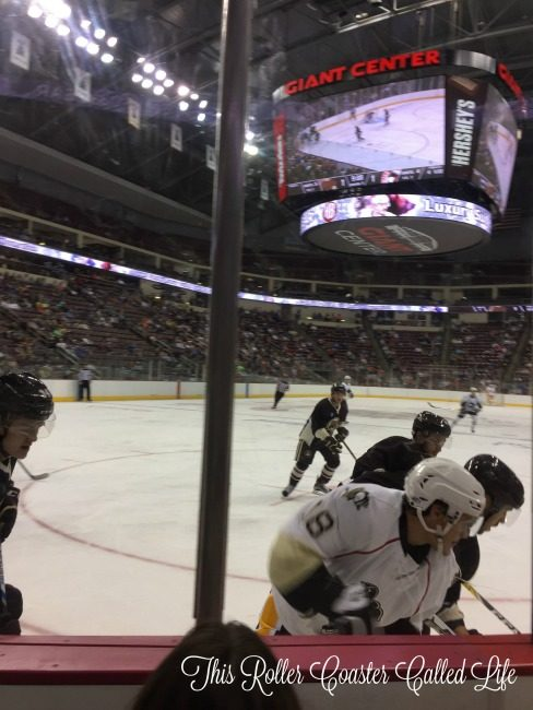close-to-the-action-at-hershey-bears