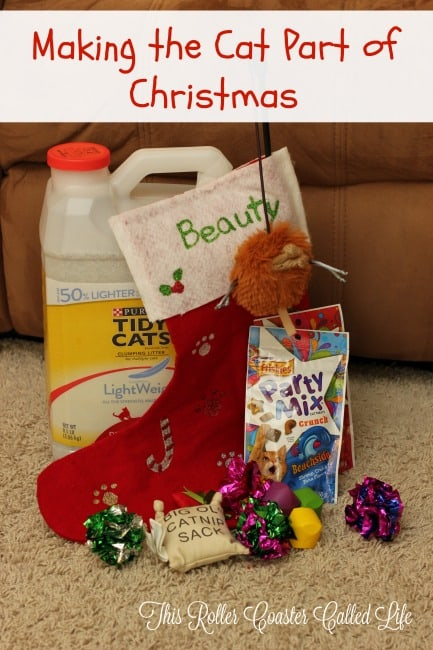 Making the Cat a Part of Christmas – Plus Craft