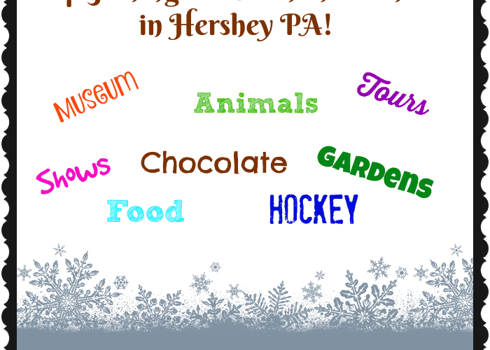 Top 5 Things to Do in the Winter in Hershey PA