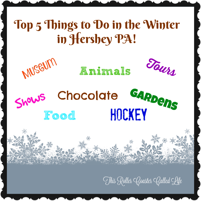top-5-things-to-do-in-the-winter-in-hershey-pa