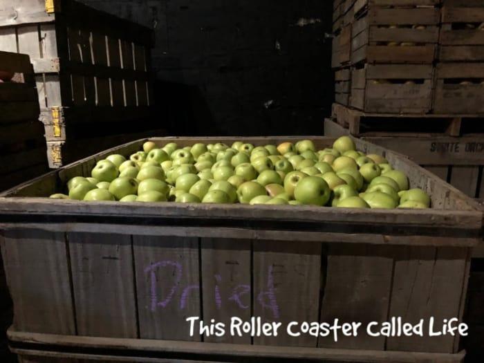 apples in storage